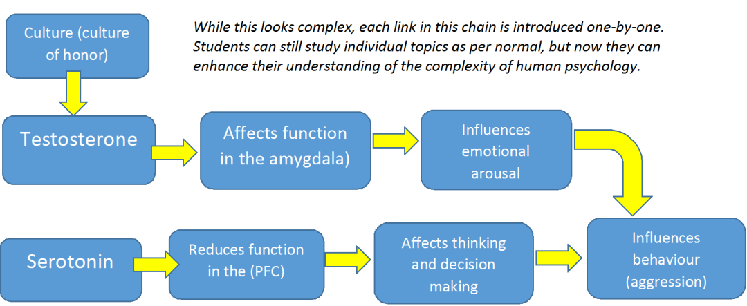Relationship Chain 3 End of Criminology